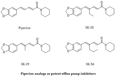 Synthesis and Characterization of Piperine Analogs as Potent Staphylococcus aureus NorA Efflux Pump Inhibitors