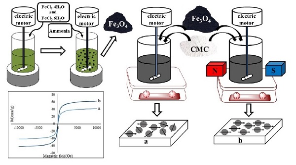 Improvement of Magnetic Property of CMC/Fe3O4 Nanocomposite by Applying External Magnetic Field During Synthesis