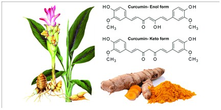 Therapeutic Effects of Nano-Phytosome of Curcumin on Anxiety-like Behaviors, Neuroinflammation and Biochemical Parameters in Rats Exposed to Stress