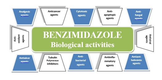 Green Synthesis of Benzimidazole Derivatives: an Overview on Green Chemistry and Its Applications