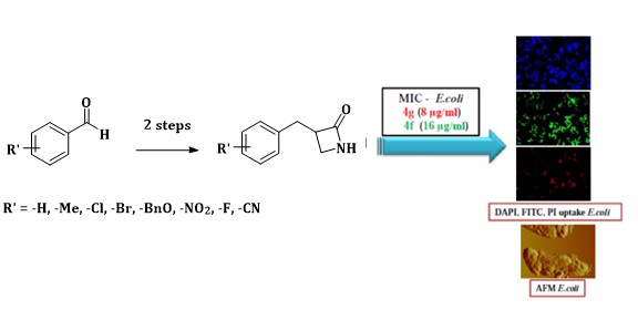 One pot Facile Synthesis of Anti-microbial β-Lactam Derivatives Catalysed by Fe(acac)3