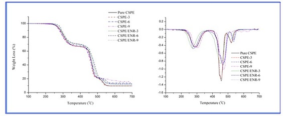 Thermal Degradation and the Morphology of Chlorosulfonated Polyethylene/Nanoclay Nanocomposites