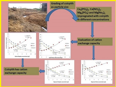A Study on Cation Exchange Capacity of Sieved Coir Pith