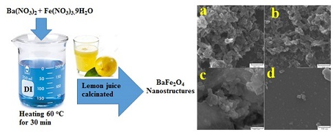Auto-combustion Preparation and Characterization of BaFe2O4 Nanostructures by Using Lemon Juice as Fuel